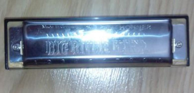 Hohner Big River1.JPG